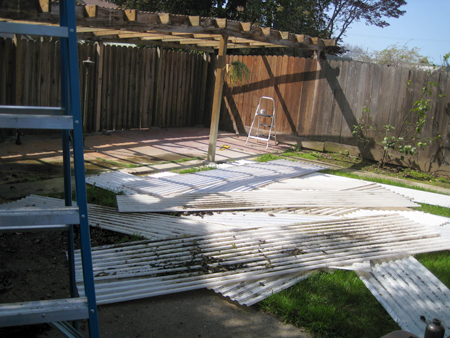 Backyard beginnings